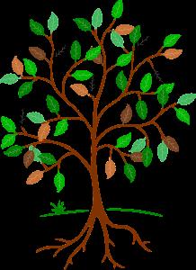 tree-684764_1920.jpg
